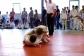 judo-bem-chemnitz-134