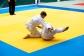Judo2012-KFA-275