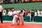 Judo2012-KFA-041