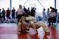 judo-bem-chemnitz-113