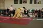 judo-lok-081
